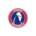 Dorking Wanderers FC Ladies